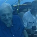 MEGA adquiere los derechos en abierto de 'La gran barrera de coral' de David Attenborough