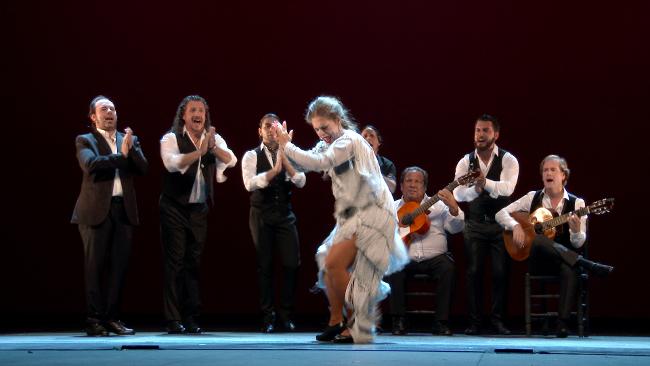 Flamenco Passion MEDINA MEDIA 4K