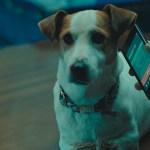 'Sabuesos', primera serie que TVE Internacional ofrece con subtítulos en inglés