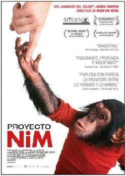 proyecto-nim-cartel