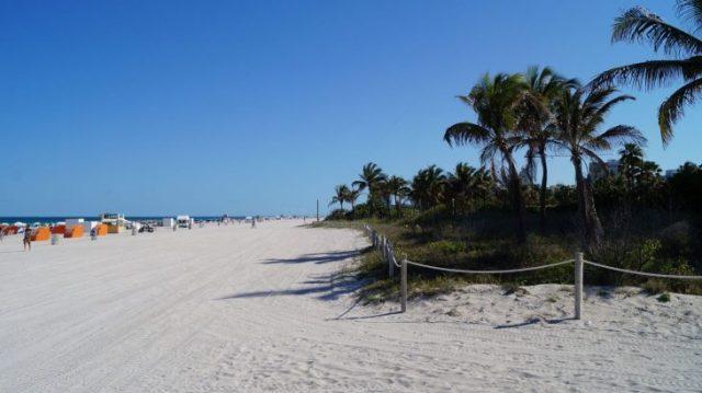 Bei Aldi sammeln und nach Miami fliegen