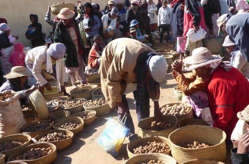 Weltreise Madagaskar Marktszene | aufmerksam reisen