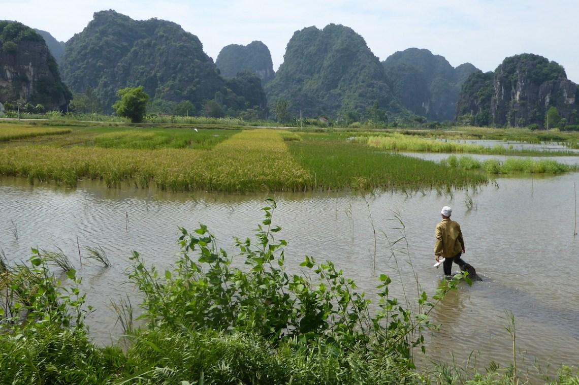 Vietnam RedRiver Mann im Wasser | aufmerksam reisen