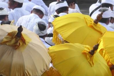 Bali-TanahLot-Schirme