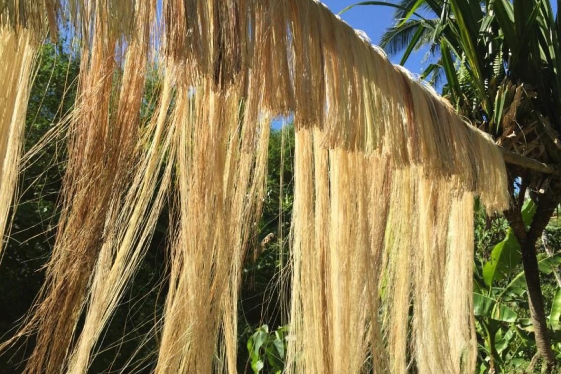 Philippinen Abaca Vorhang | aufmerksam reisen