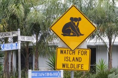 Australien-Tierleben-Koala-Schild