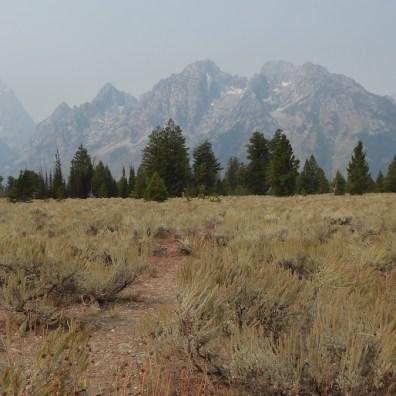 USA-GrandTetonNationalpark-Berge