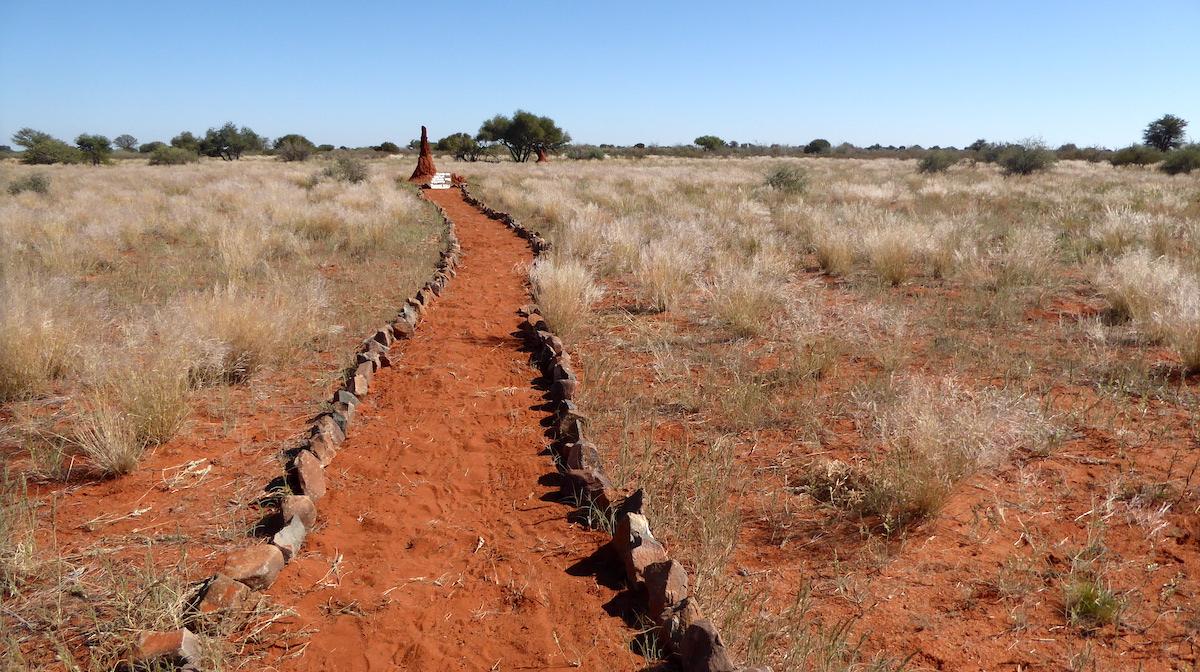 Weg aus rotem Sand in der Kalahari-Wüste in Namibia