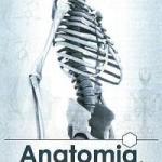 anatomia #lavalvirtual