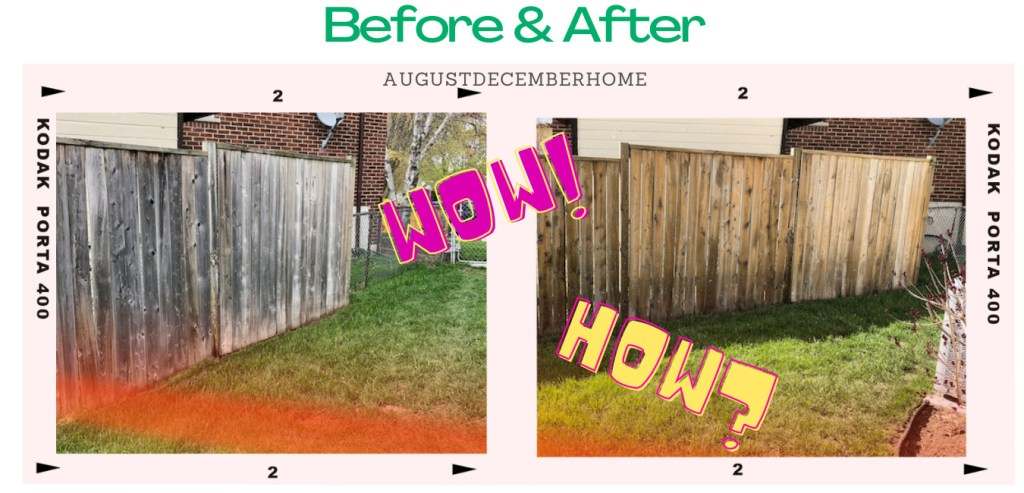 Cleaning wooden fence before and after