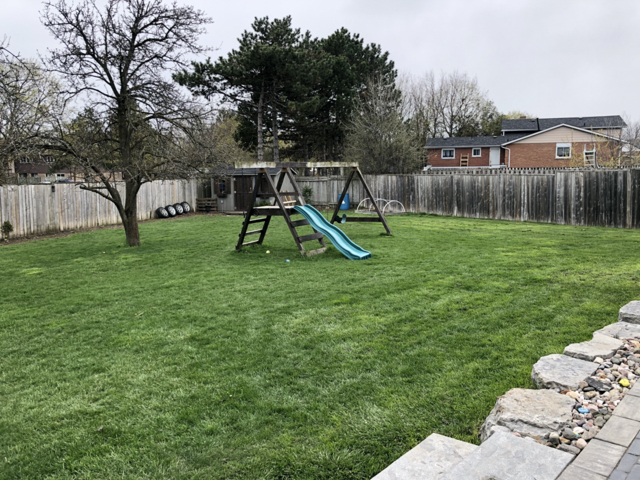 beautiful well maintained green lawn
