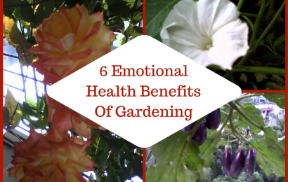 6 Emotional Health Benefits Of Gardening
