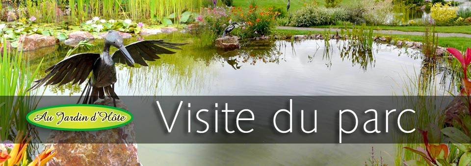 Au Jardin Dhte Jardin Aquatique Spcialiste En Bassin