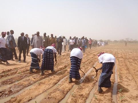 Journée nationale des légumineuses : Objectif, valoriser la filière agricole