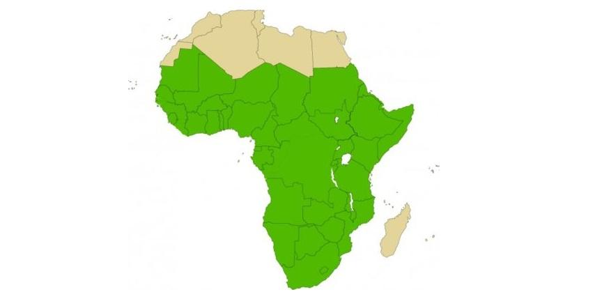 Fin du «califat» de l'EI en Syrie: Et l'Afrique dans tout ça?