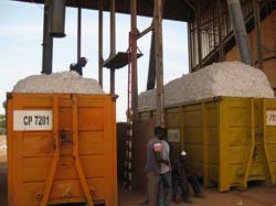 Campagne d'égrenage 2018-2019: 405 000 tonnes attendues contre une prévision de 500 000 tonnes