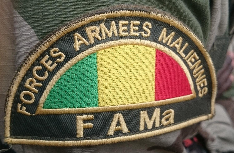 Mali : quinze djihadistes présumés «neutralisés» près de la frontière burkinabè