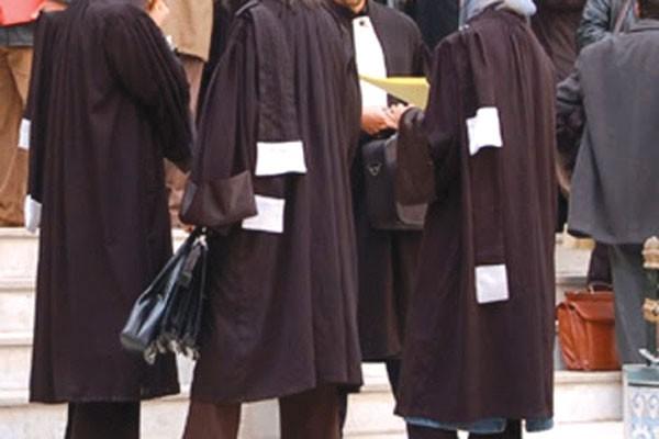 Algérie: Les avocats enrobent la robe contre la justice… et le référendum