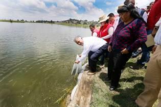 Aprovecha-Toluca-cuerpos-de-agua-del-municipio-para-la-acuacultura-3