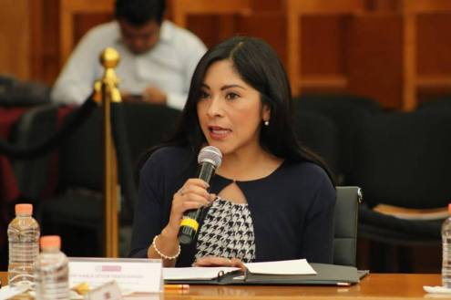 Vigilará GPPAN, las finanzas públicas y la legalidad de los PPS