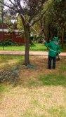 Obtienen-inspectores-ambientales-de-Toluca-registro-oficial-de-la-SMA-2