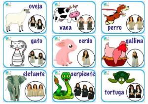 bingo animales