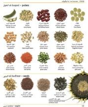 diccionario semillas