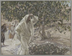Brooklyn Museum, The Accursed Fig Tree (Le figuier maudit) - James Tissot, 1894