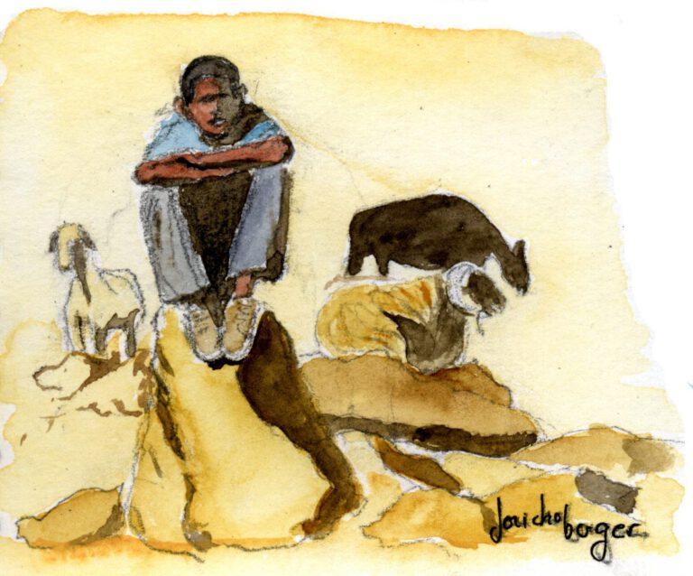 Galiée, désert, jeune berger
