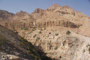 Ein Gedi, réserve naturelle, Israël