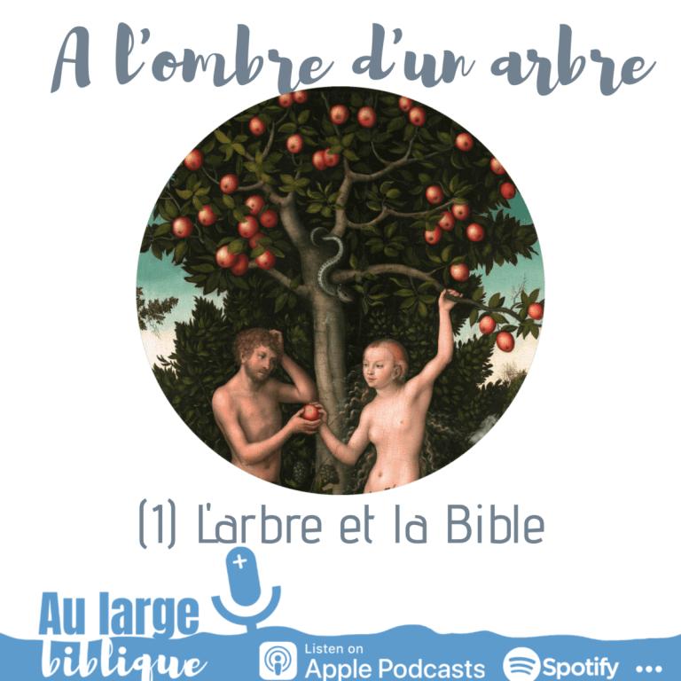 A l'ombre d'un arbre (podcast) L'arbre et la Bible