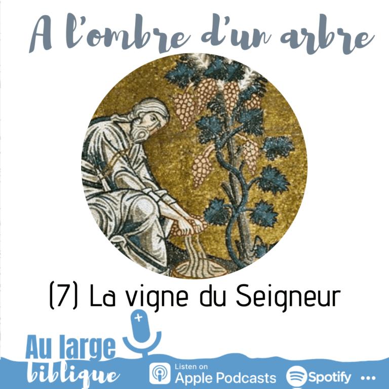 A l'ombre d'un arbre (podcast) La vigne du Seigneur