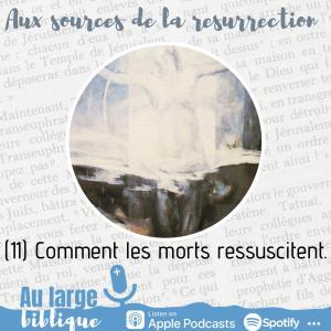 Read more about the article Aux sources de la Résurrection (11) Comment les morts ressuscitent