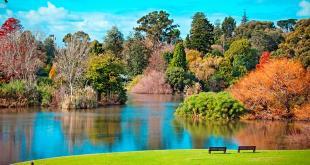 C:\Users\Sophia\AppData\Local\Microsoft\Windows\INetCache\Content.Word\The-Royal-Botanic-Gardens-web620.jpg