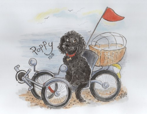 Poppy On Trike Drawing