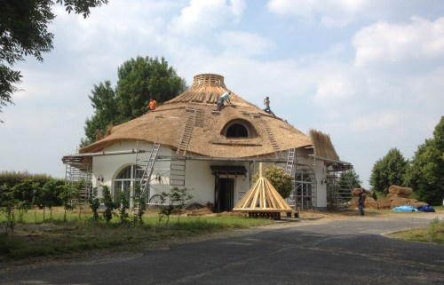 Hobbit house thatching