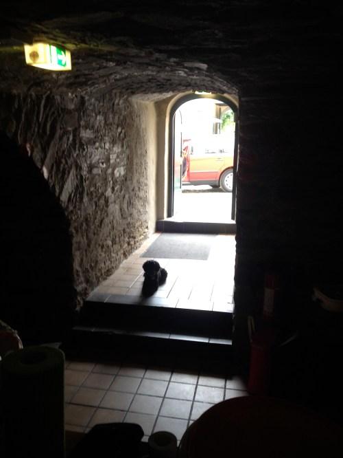 Poppy in doorway