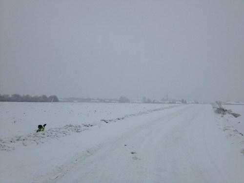Snowy St Hubert