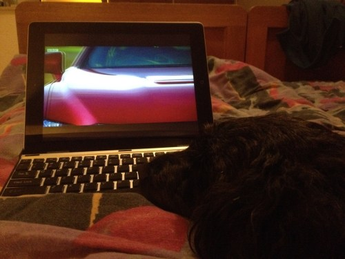 Poppy watches Top Gear