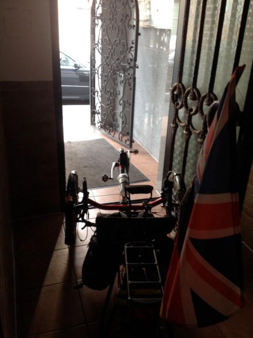 Alfie in Babs's Hallway