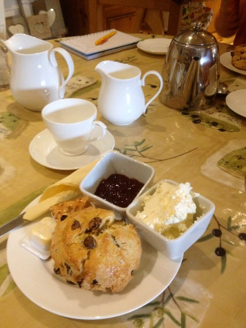 Cream tea at Craft Nurseries 2