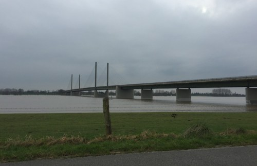 Rhine Bridge