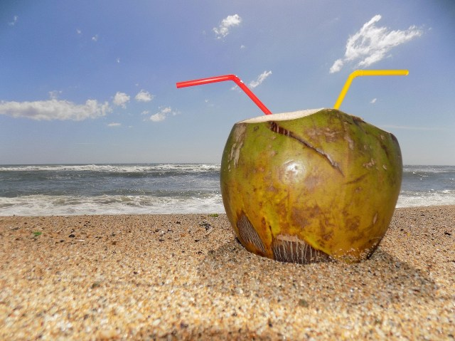 Coconut Health Beauty Skin