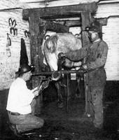 Le Maréchal Ferrant dans la mine au pays des ch'tis
