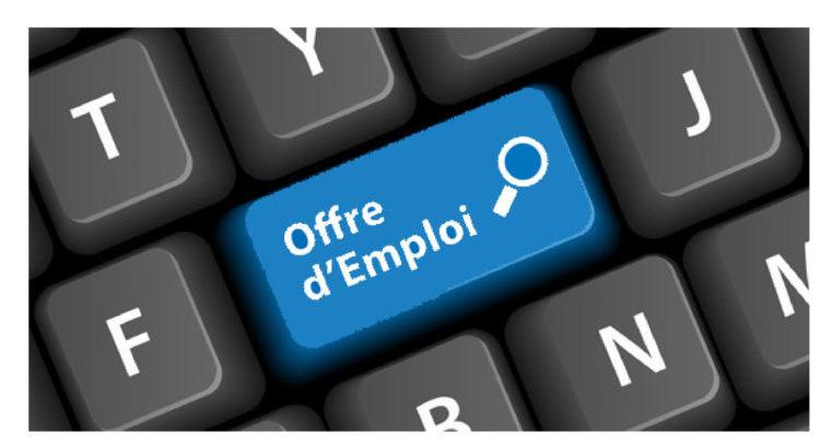 Job offer: Judo and Taïso teacher in Haute-Savoie