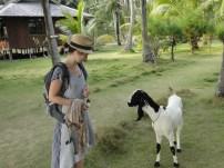imagini din indonezia (34)