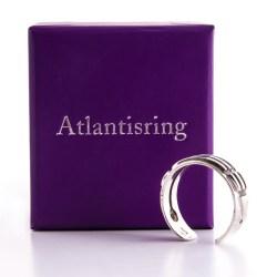 Atlantisring, Ankh und Triskell