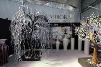 Aurora Showroom