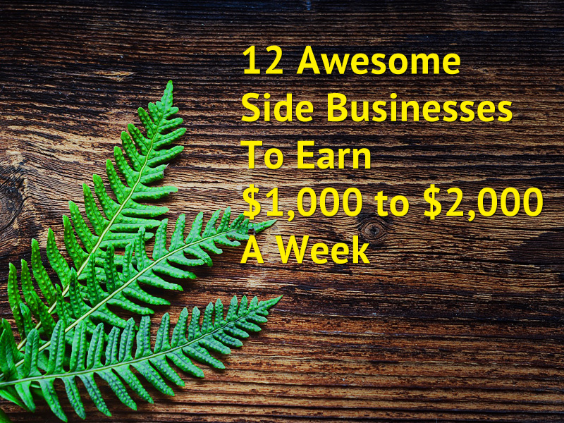 12 Awesome Side Businesses To Earn $1,000 to $2,000 A Week