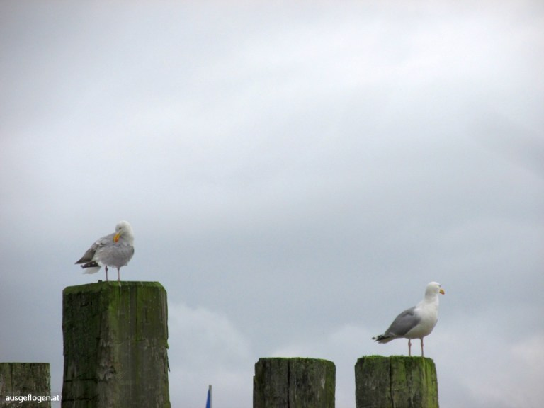 Nordsee Urlaub